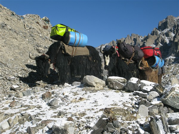 Doxa TC Trofeo Mount Everest 19